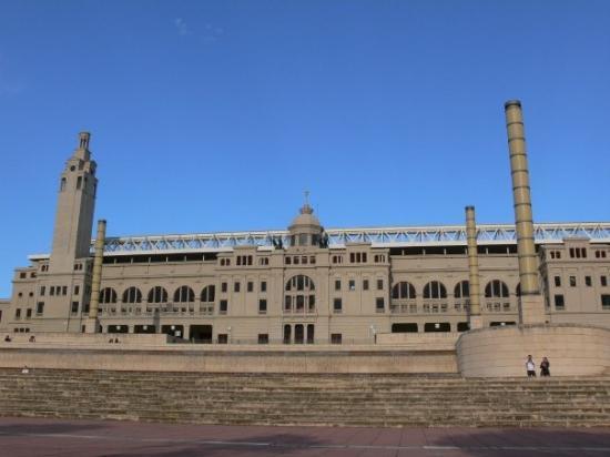Stadio Olimpico ภาพถ่าย