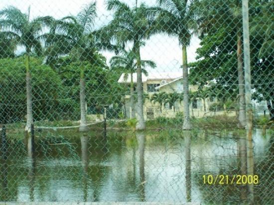 เบลีซซิตี, เบลีซ: Belize..alot of flooding going on, our cave tubbing adventure was cancelled due to it!