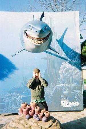 """วอลต์ ดิสนีย์ สตูดิโอส์ ปาร์ค: """"Please don't let the big shark fall on my head..."""""""