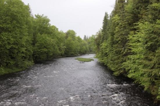 Mont Tremblant, แคนาดา: Rivière sauvage avec rapides, idéal pour faire du canoë et observer les castors!