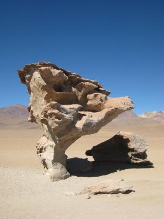 Uyuni, โบลิเวีย: The Stone tree Bolivia desert crossing