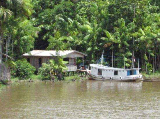 มาเนาส์: Settlements on the Amazon river