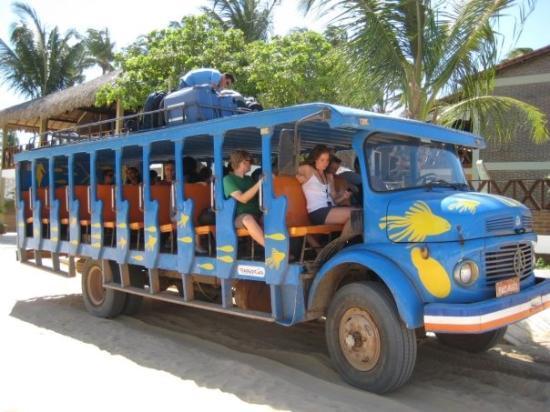 เจริโคอาโคอารา: Our ride from Jericoacoara