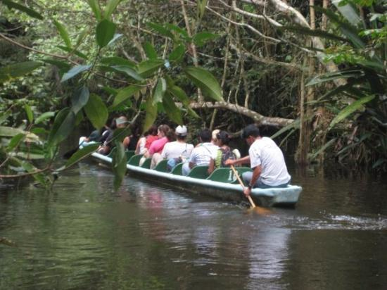 Yasuni National Park, Ecuador: Paddle boat to our lodge, Amazon jungle