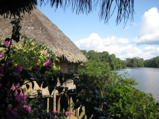 Yasuni National Park, Ecuador: La Selva lodge, Amazon jungle