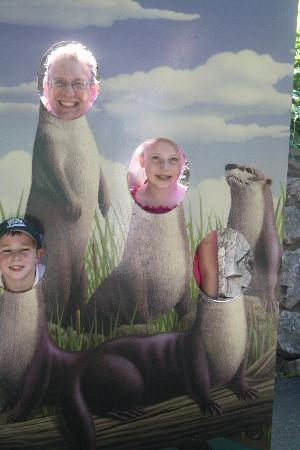 St. Louis Zoo: Chidren's Zoo