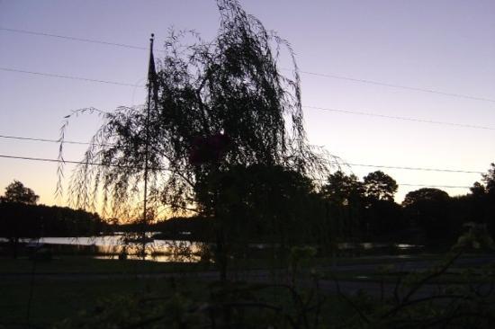 Foto de Tall Timbers