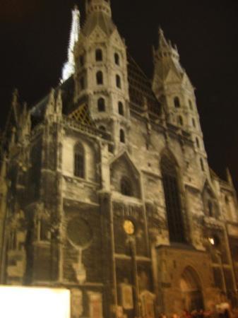 มหาวิหารเซนต์สเตเฟน: Stephansdom at night.
