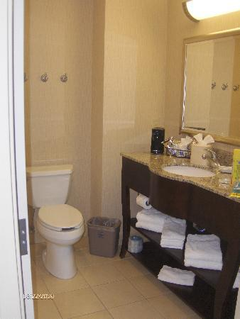 Hampton Inn Gainesville-Haymarket: Bathroom