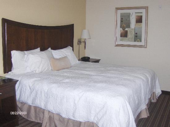 Hampton Inn Gainesville-Haymarket: Sleeping area