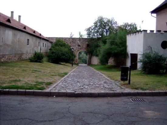 Sarospatak Photo