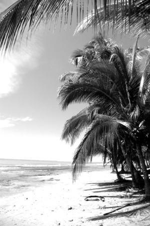 ปวยร์โตไวโจ, คอสตาริกา: Punta Uva
