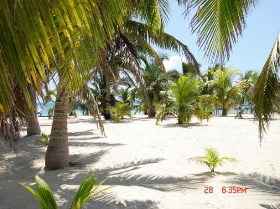 plages d'akumal..les plus belles..