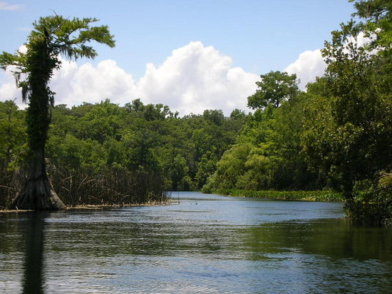 Wakulla Springs Photo