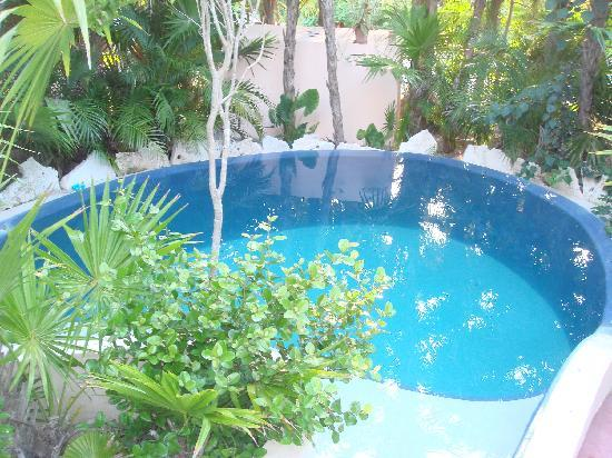 Best swimming pool ever  Picture of Nah Uxibal Villa and Casitas