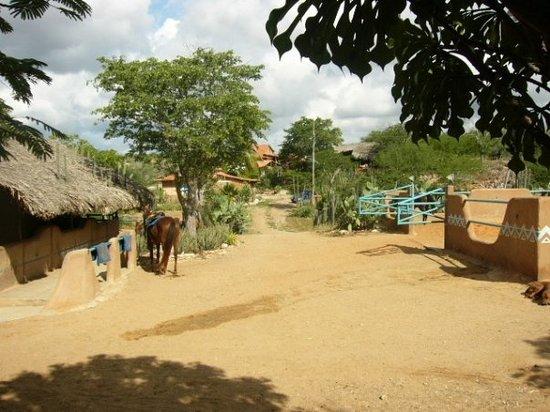 Ranch Cabatucan