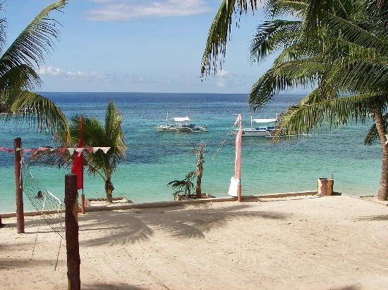 Bohol Divers Resort: view from restaurant