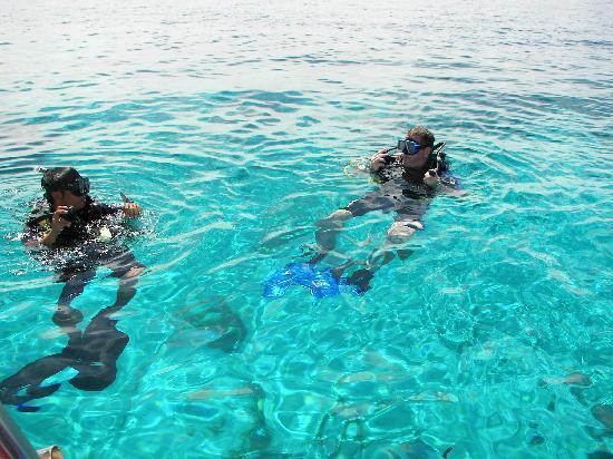 Bohol Divers Resort: clear water