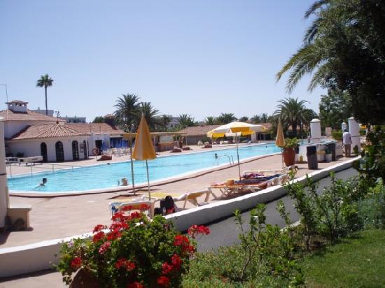 Sun Club Apartments: Piscina
