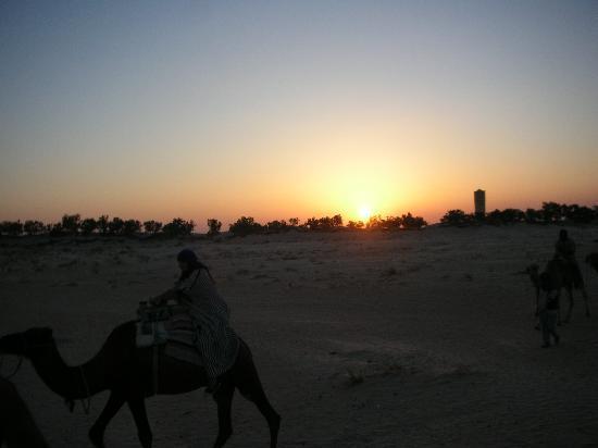 Hotel Sahara Douz: ballade en dromadaire