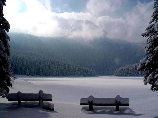 Zabljak, Montenegro: 14