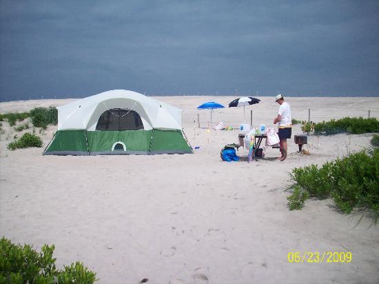 Site 61 picture of assateague island national seashore for Cabins near assateague island