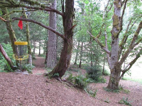 disk golf mciver picture of milo mciver state park portland