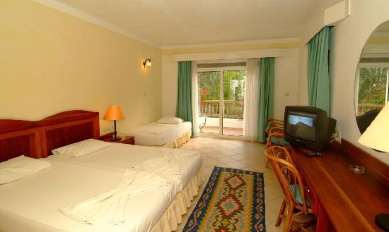 Okaliptus Hotel : ROOM
