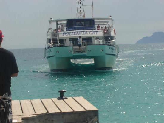 Hotel Condesa de la Bahia: boat trip