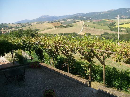 Country House Villacasabianca1573: Vista dalla camera