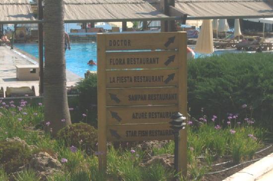 Comfort Flora Beach: varie