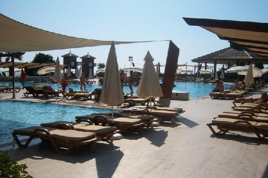 Comfort Flora Beach : piscina