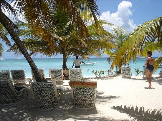 Excellence Punta Cana: Saona Island, a trip you should make!