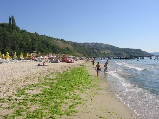 Hotel Kaliakra: The beach in front of the Arabella Beach hotel, near Kaliakra hotel