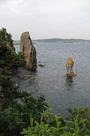 Cliffs, stacks, and sea