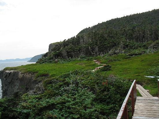 Boardwalks, stairs, maintained trails