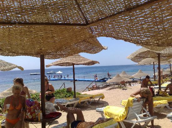 Concorde El Salam Front Hotel: in spiaggia