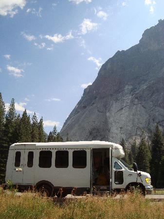 Restaurant Picture Of Yosemite Bug Rustic Mountain