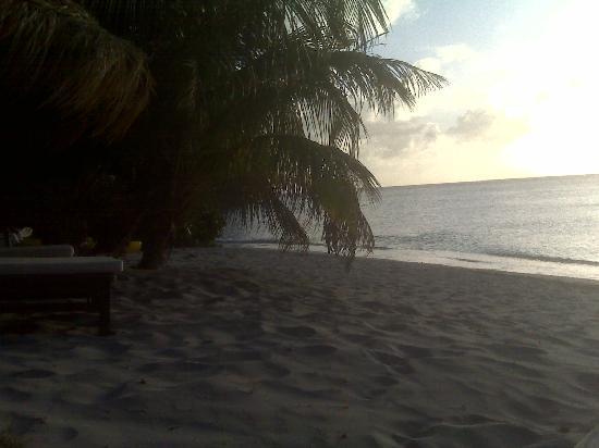 Laluna Hotel: The beach
