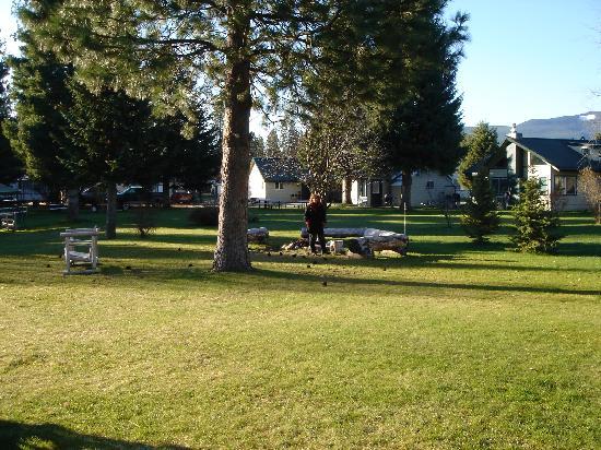 Lakeside Motel & Resort: Backyard barbeque