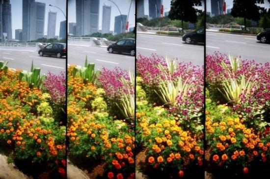 ชัยปุระ, อินเดีย: @Singapore 2007