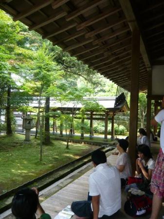 Ryoanji Temple: 但我堅持 龍安寺最美的是                                        走著便感覺到歴史的地板