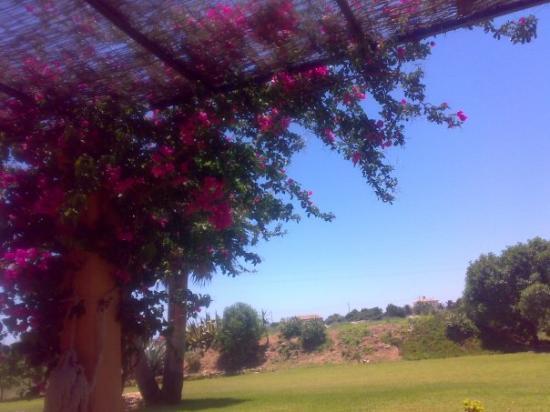 Majorca Photo