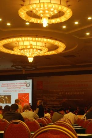 Jiuhua Resort & Convention Center: SCB2009, Beijing Day 1, 12 July: opening ceremony. The lighting in the main hall was almost as d