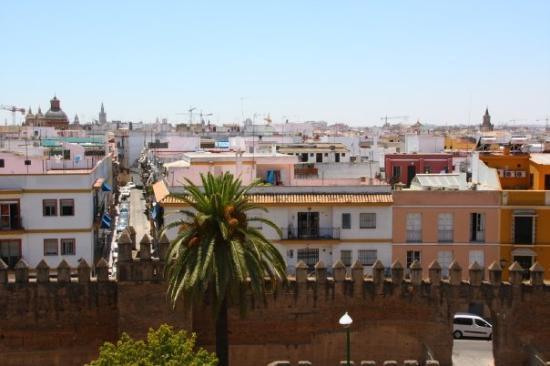 Exe Sevilla Macarena: Vsitas desde el hotel