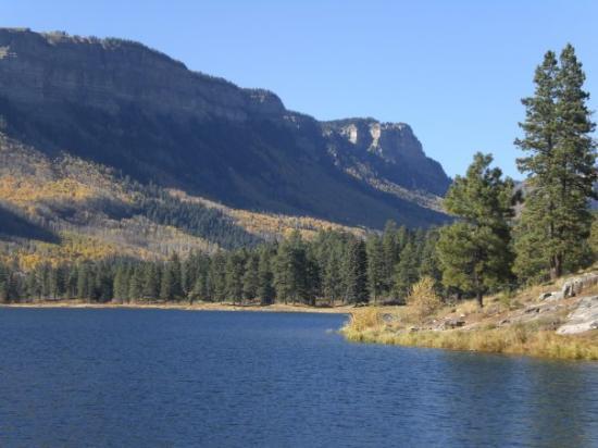 Haviland lake campground san juan national forest 20 for Noleggio di durango cabinado colorado