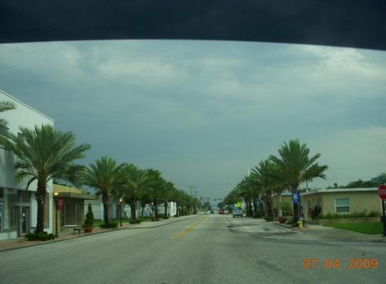 เคปคอรัล, ฟลอริด้า: Perfect view of palm trees, no potholes, and no traffic.....ahhhhhh