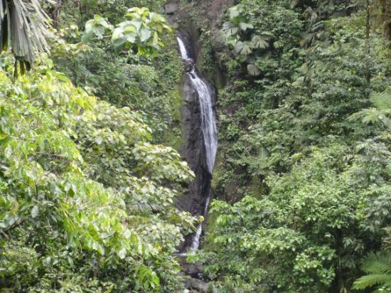 อุทยานแห่งชาติ Arenal Volcano National Park, คอสตาริกา: 6th bridge - nice waterfall ALL THE WAY OUT THERE..actually this is zoomed, it was the size of m