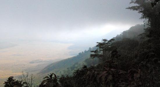 Ngorongoro Conservation Area, แทนซาเนีย: Ngorongoro Crater