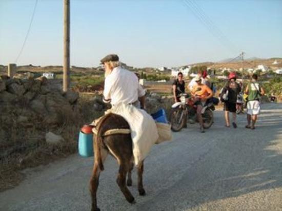 Naxos (Stadt), Griechenland: naxos, adieu